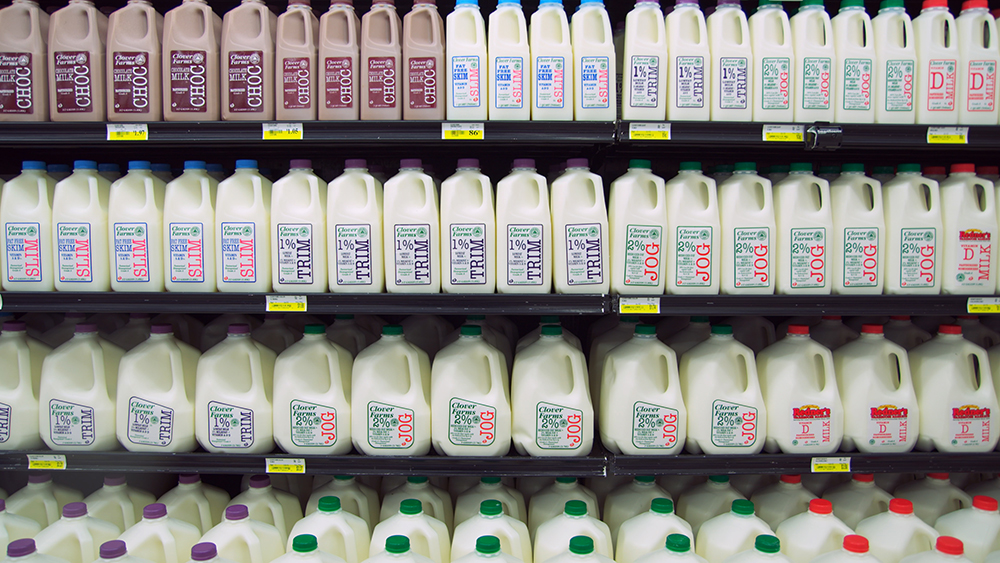 clover farms dairy milk products